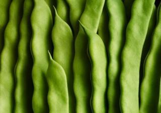 зеленые стручки бобов