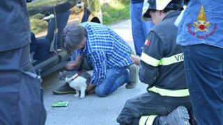 Rescuers with Rocco the cat.