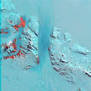 Ледник Бёрда