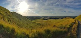 White Horse Hill in the evening sunshine