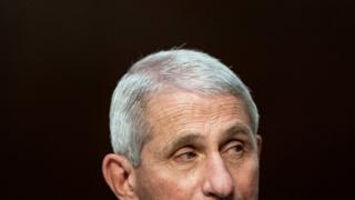 coronavirus vaccine Dr Anthony Fauci