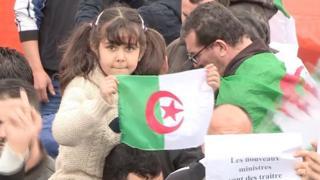 لماذا تستمر الاحتجاجات في الجزائر بعد استقالة بوتفليقة؟
