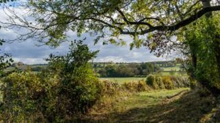 Оксфордширский пейзаж