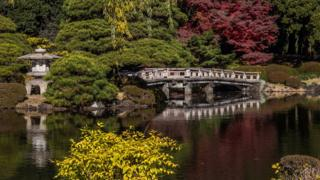 Image of Shinjuku Gyoen National Garden