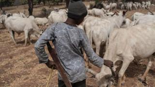 Fulani boy stand with im cow dem
