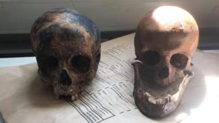Two human skulls found by Police in Totnes.
