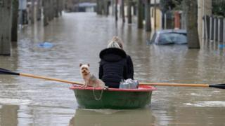Dog and woman in a boat