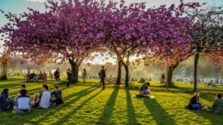 Monday holiday + sun out + blossom out = a packed Meadows in Edinburgh. Graham Paton took this picture