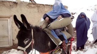 A donkey with an inflatable saddle carrying a woman