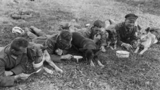 Німецькі солдати