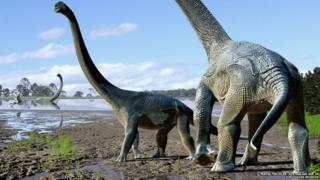 Meet Savannasaurus: A new type of dinosaur