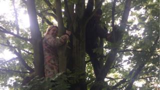 Protesters in tree