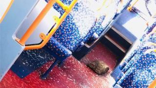 Brick in bus