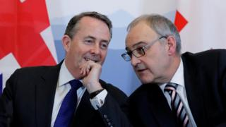 International Trade Secretary Liam Fox talks to Swiss Economy Minister Guy Parmelin