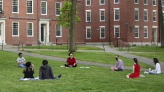 Mayıs ayında Harvard'da sosyal disiplinli hukuk-okul mezuniyet kutlaması