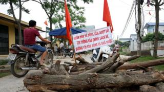 Barricada con troncos y carteles.