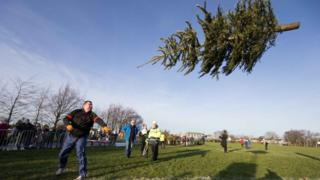 Christmas tree throwing competition County Clare