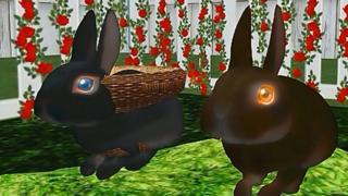 Virtual rabbits