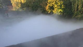A cloud of carbon dioxide over a garden