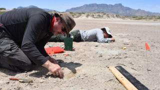 Investigador analizando huellas