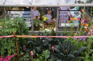 鼓励儿童参与园艺