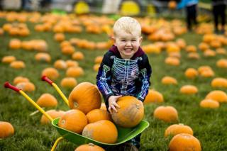 Two-year-old Leo Jackson dressed as a skeleton whilst pumpkin picking at Streamvale Open Farm in Belfast