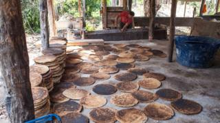 Bijus para produção de tiquira