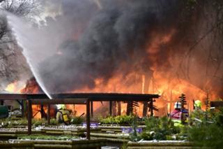 Blaze at Speyside Heather Centre