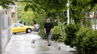Man walks his dog in Tehran, May 2018