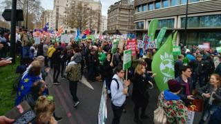 The Green bloc at the People's Vote march in London