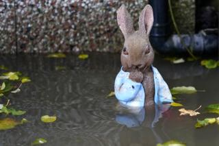 A statuette of Peter Rabbit in a flooded garden