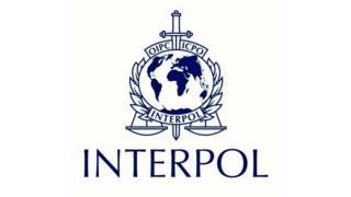 interpol logosu