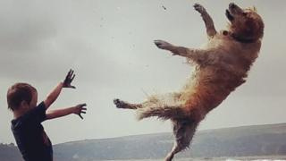 Un niño haciendo volar a un perro.