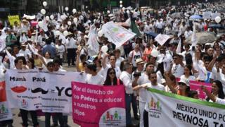 "Members of the National Front for the Family marched in Mexico City to protest President Enrique Pena Nieto""s initiative to legalize gay marriage"