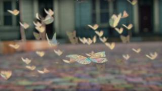 Butterflies in the air