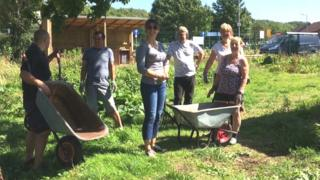 Allotmentiers get busy at Badgers Brook