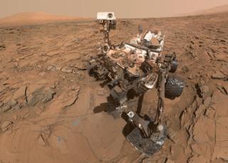 Curiosity selfie