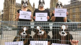 Anti-dog meat campaigners at Westminster