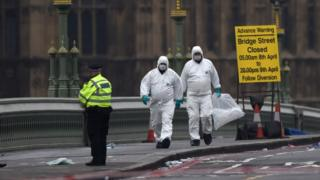 Maafisa wa polisi wa uchunguzi wa mwili katika daraja la Westminster Bridge