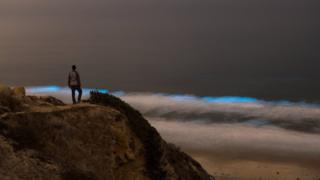 """It's pretty incredible to see bioluminescence in person, but it can be surprisingly easy to miss!"" photographer Jack Fusco explained. He captured this observer on a vantage point"
