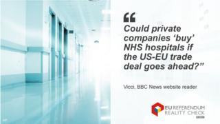 """Vicci asking: """"Could private companies 'buy' NHS hospitals if the EU-EU trade deal goes ahead?"""""""