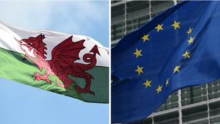 The Welsh and EU flags