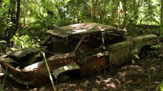 Carro no meio da selva