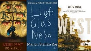 Three book covers, from left to right shortlisted: Insistence by Ailbhe Darcy, Llyfr Glas Nebo by Manon Steffan Ros and West by Carys Davies