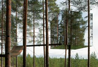 'Mirrored Tree House' by Tham and Videgard Arkitekter - Sweden