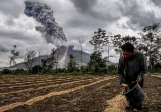 A farmer fertilizes his farm as Mount Sinabung volcano erupts behind him.
