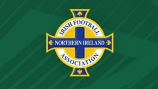 The Irish FA is the Northern Ireland football governing body