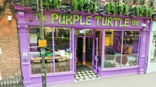 Purple Turtle in Reading