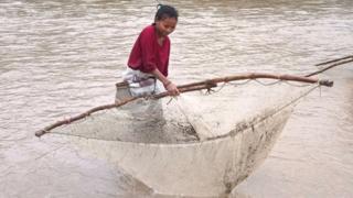 कञ्चनपुरको शुक्लाफाँटा नगरपालिकाको सनवोरा नदीमा बाढी आएको बेलामा माछा मार्न जाल थाप्दै एक थारु महिला ।
