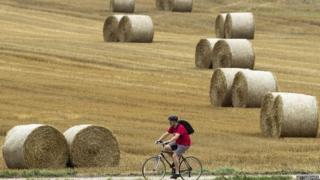 Cyclist riding through field in Cudham, Kent